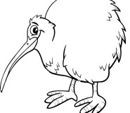 printable kiwi bird coloring