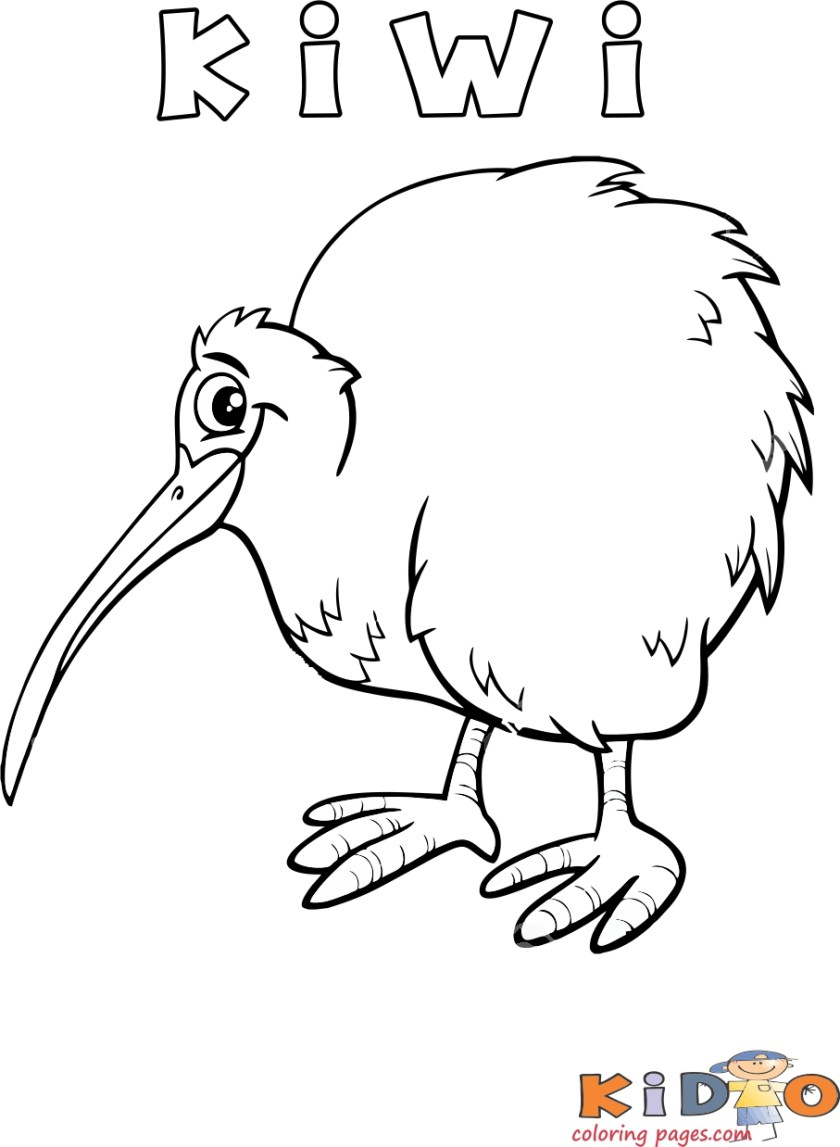 printable kiwi bird coloring