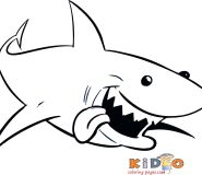 Print out sharks pages to color for kids