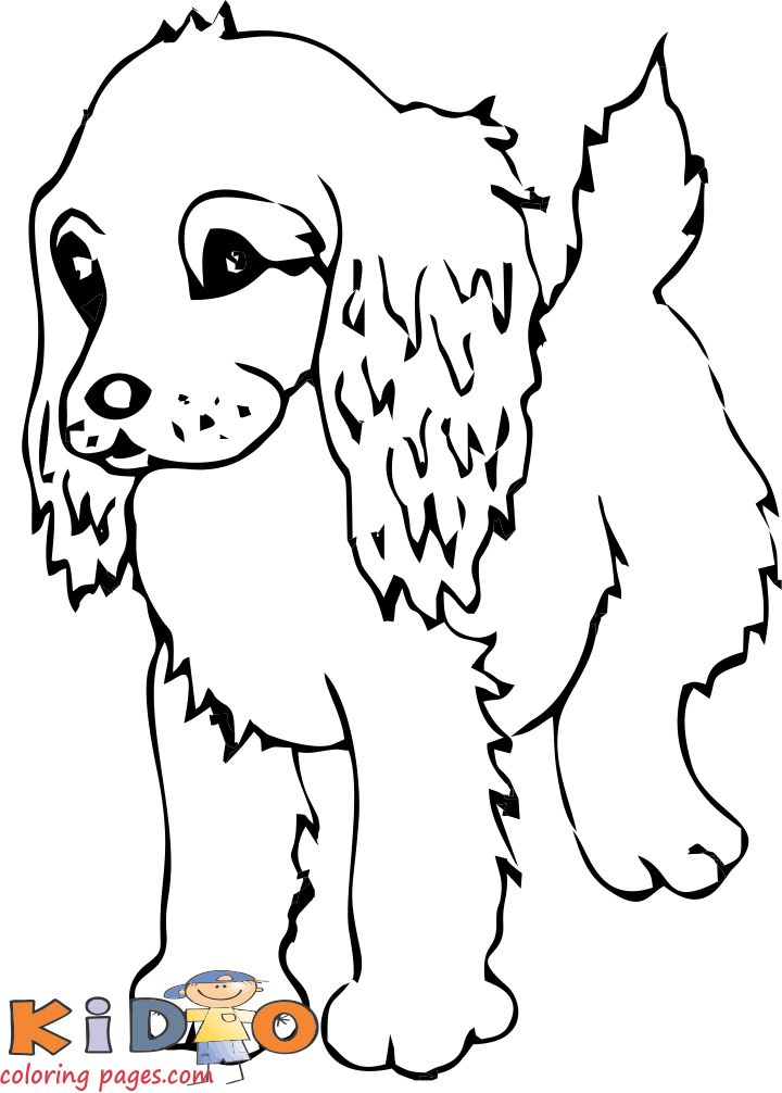 Cocker spaniel cute dog coloring pages to print out