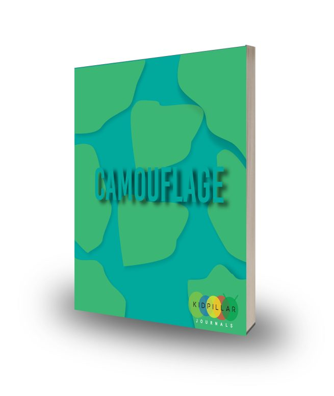 camouflage animal adaptations for kids