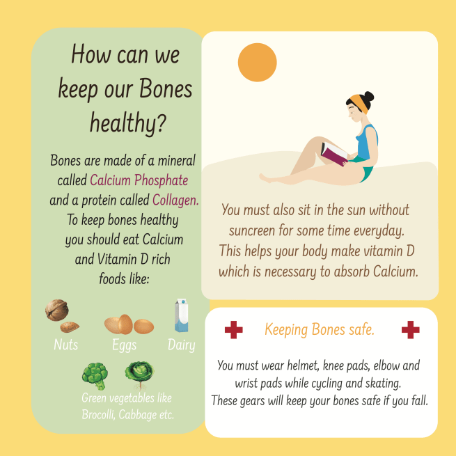 Human Body STEM Book for kids