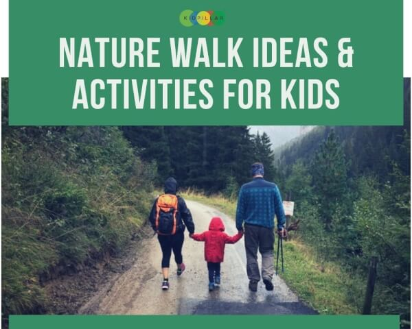 Nature Walk for Kids
