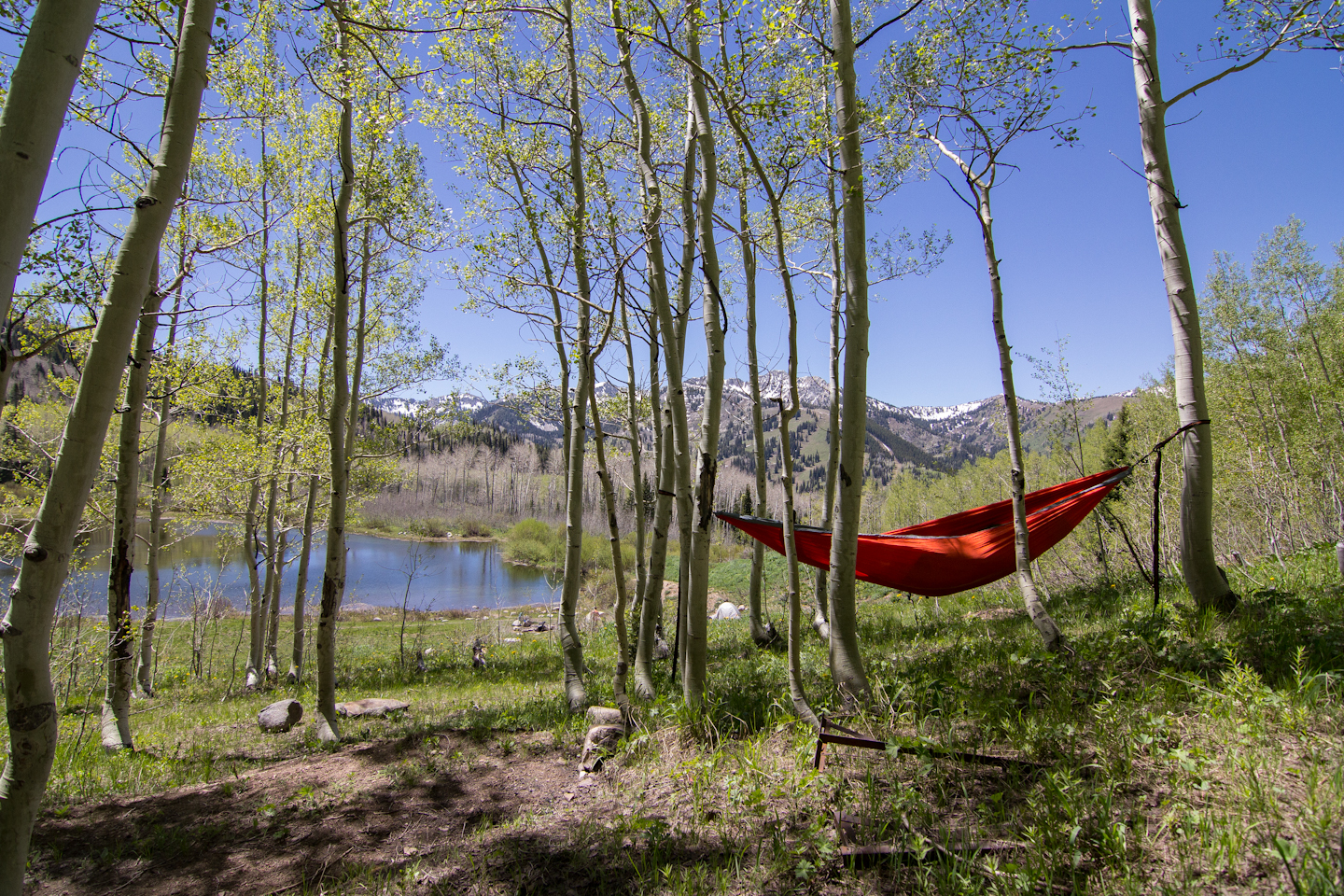 Gear Review Eno Double Nest Hammock With Profly