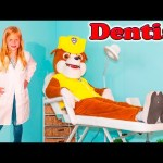 ASSISTANT The Dentsit Paw Patrol Rubble Has a Sore Tooth Funny Kids Video