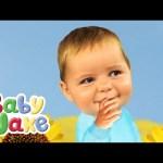 Baby Jake – Plays Hide And Seek
