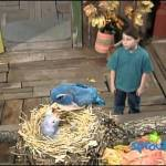 Barney & Friends: At Home With Animals (Season 3, Episode 13)