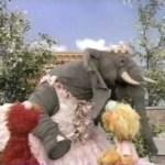 "Sesame Street – ""Elmo vs. Rocco"" double feature!"