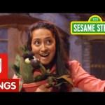 Sesame Street: Unique Song