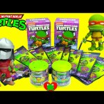 Teenage Mutant Ninja Turtles Action Vinyls, Dog Tags, and Mashems