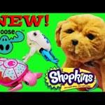 NEW 2016 Shopkins Season 5, Little Live Pets Puppy,  Beados & Betty Spaghetti by DisneyCarToys