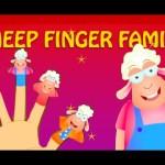 Sheep Finger Family – Finger Family Rhymes For Children