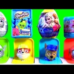Paw Patrol Pop Up Pups Toys Surprise Zootopia Zootropolis Frozen Pop-Up Pals Rocky Zuma Rubble Chase