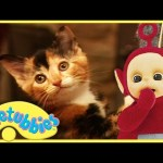 Teletubbies Full Episode – Kittens ★ Episode 182 – HD
