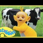 ★Teletubbies English Episodes★ Milking Cows ★ Full Episode – HD (S06E136)