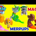 Paw Patrol Magic Merpups Saves Mermaids with Shopkins Surprises