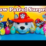 PAW PATROL Nickelodeon Paw Patrol Surprise Eggs & Basket & Miles TomorrowlandToys Video