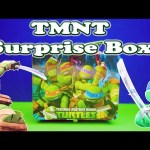 TEENAGE MUTANT NINJA TURTLEs Nickelodeon TMNT Surprise Lunch Box Surprise Toys Video
