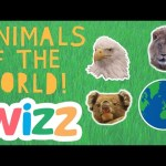 Animals of the World | Wizz Originals