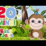 Baby Jake – Sydney the Monkey | Sunny Tropical Adventures