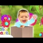Baby Jake – Sitting in a Box   Full Episodes   Yacki Yacki Yoggi   Cartoons for Kids