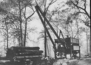Logging Facts For Kids