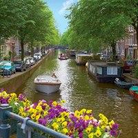 Qual é a cidade mais habitável do mundo? A resposta não é assim tão simples