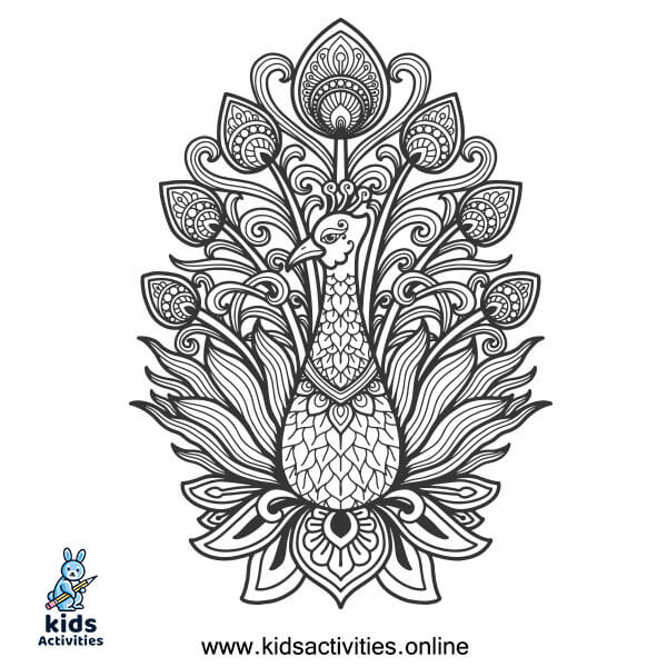 Peacock coloring page free