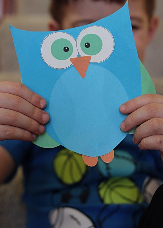 Super Cute Printable Owl Craft Choose Pink Or Blue