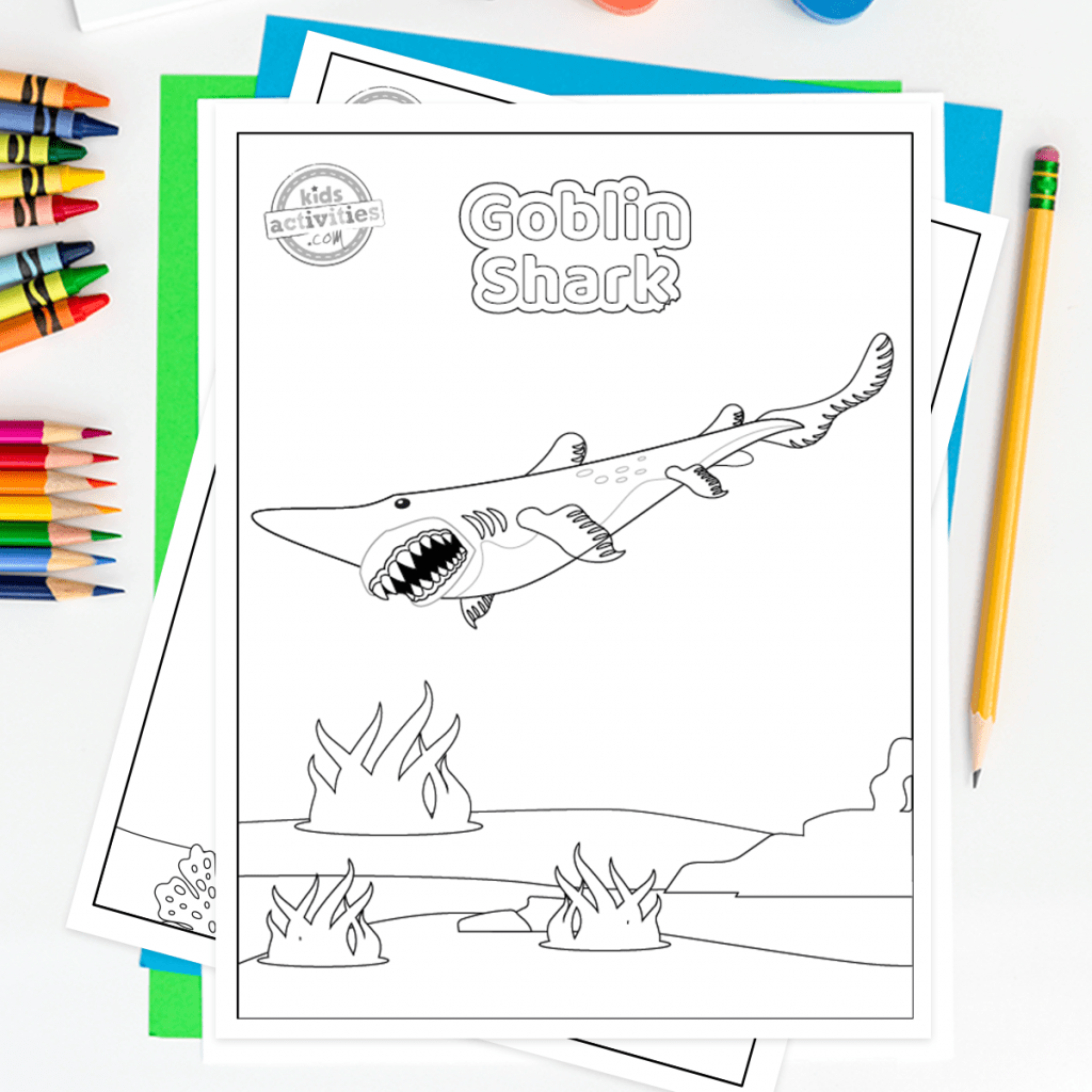 Download The Cutest Shark Week Printable Pictures To Color