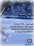 Toronto salt problem