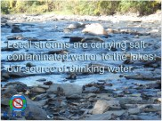local stream contaminated with road salt