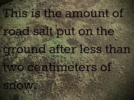 Excess Road Salt