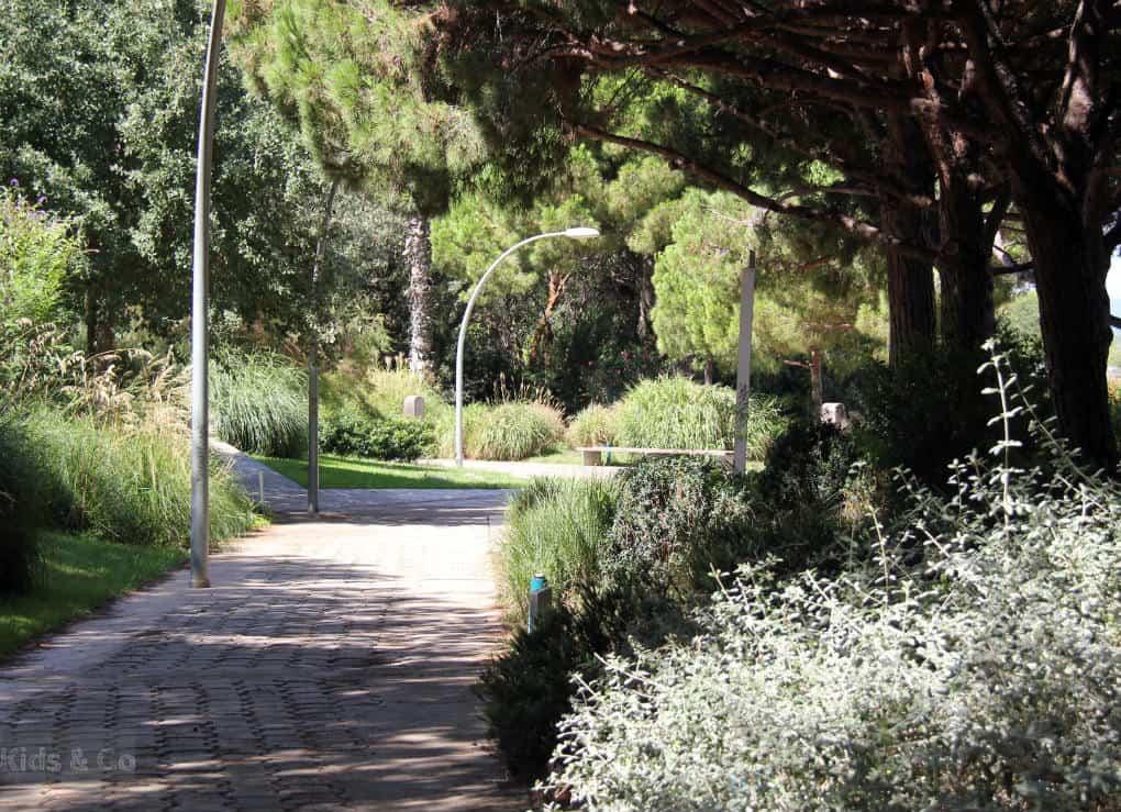Atrakcje Barcelony dla dzieci - Wzgórze Montjuic