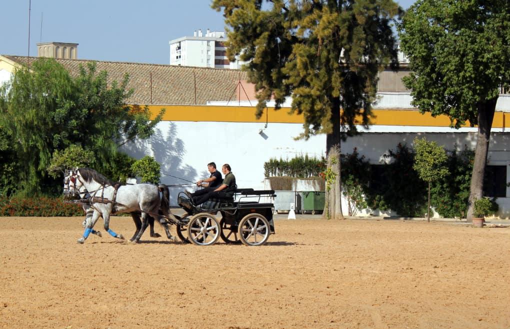 Wakacje w Andaluzji