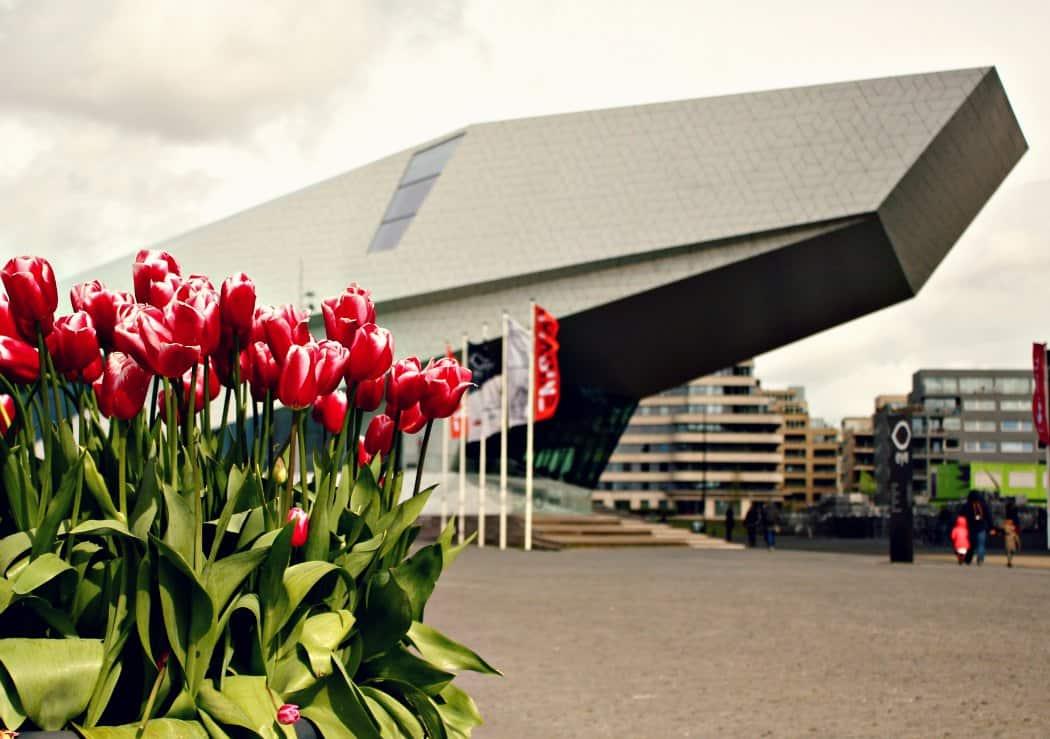Amsterdam co warto zobaczyć - Eye Filmmuseum