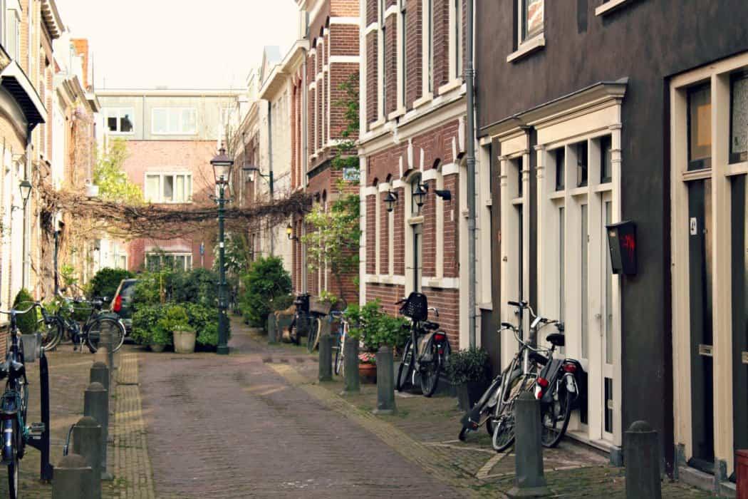 Spacery po Haarlem
