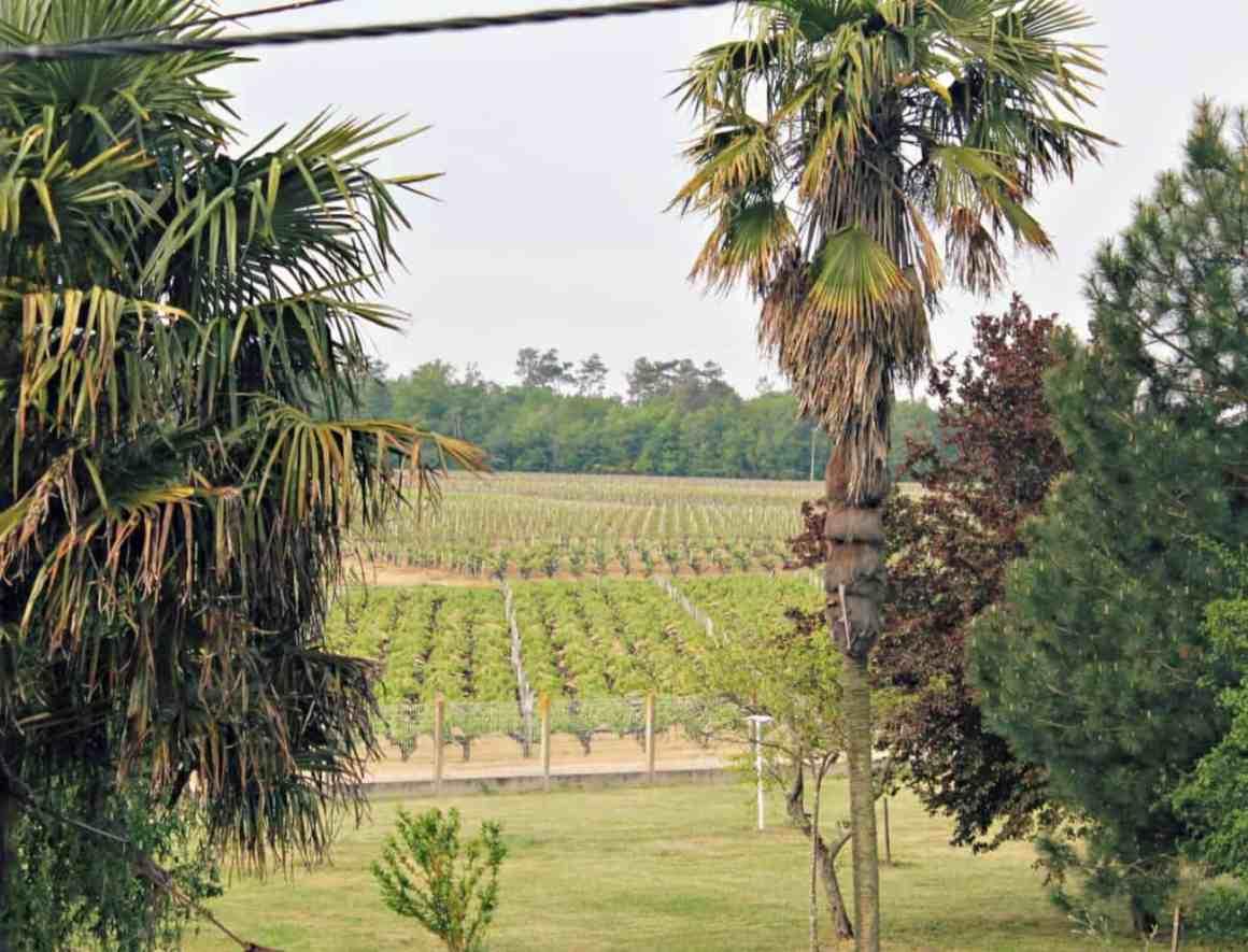 Bordeaux i okolice