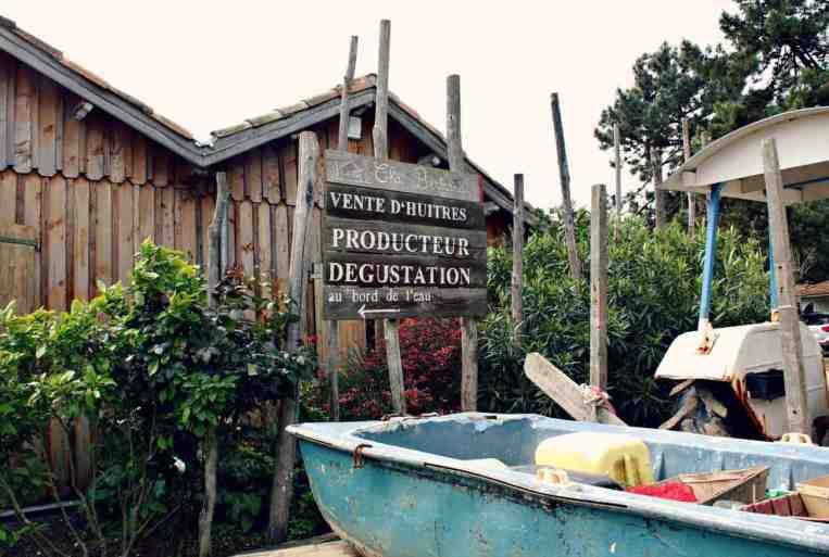 Ostrygi w Akwitanii