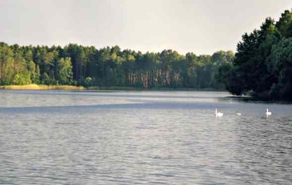 Popoludnie nad jeziorem