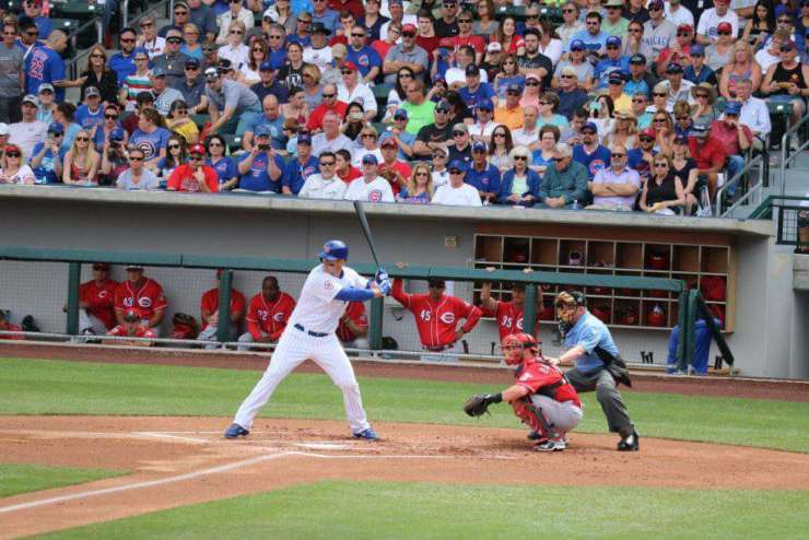 Best Family Activities in Phoenix Spring Training-Kids Are A Trip