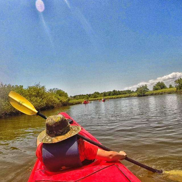 Kayaking with Ripple Effect Eco Tour