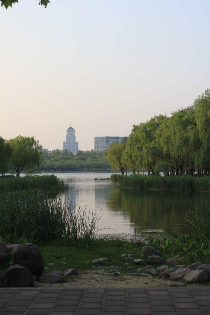 Century Park Things to Do in Shanghai-Kids Are A Trip