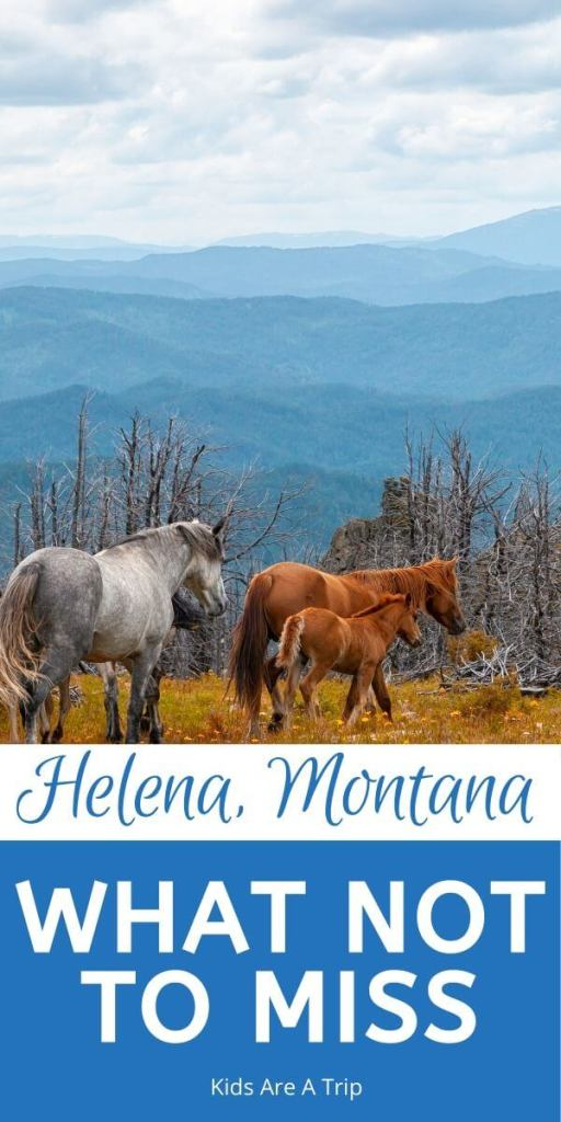 What Not To Miss In Helena Montana-Kids Are A Trip