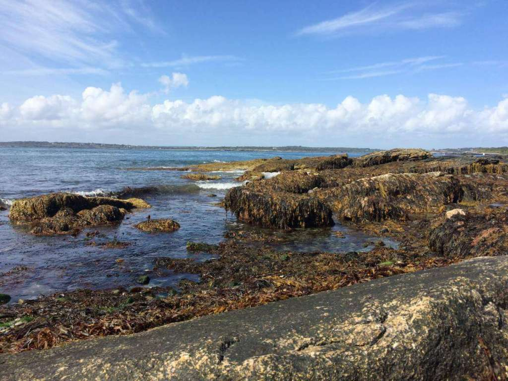 Family Friendly Things to Do in Newport Rhode Island Brenton Point State Park-Kids Are A Trip