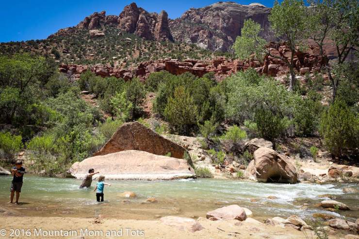 family-friendly-things-to-do-in-zion-play-in-the-water-kids-are-a-trip