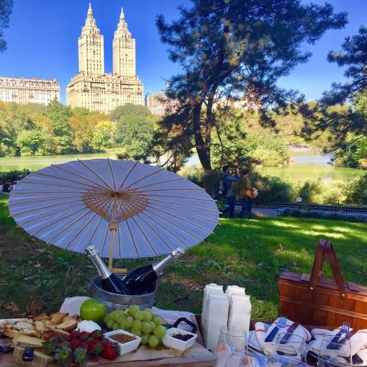 new york city weekend with kids priceless picnic central park-kids are a trip