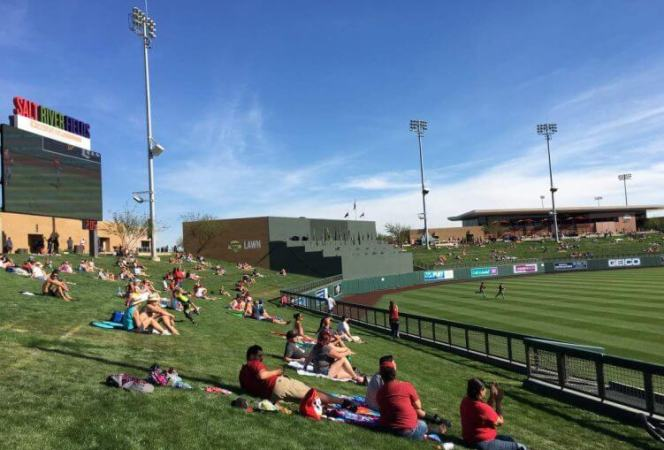 spring training phoenix arizona