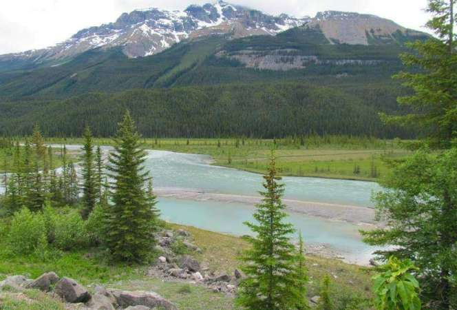 Canada's national parks are a dream for any traveler. One of the best is found in Alberta. Here are the best family friendly things to do in Jasper, Alberta, Canada. -Kids Are A Trip