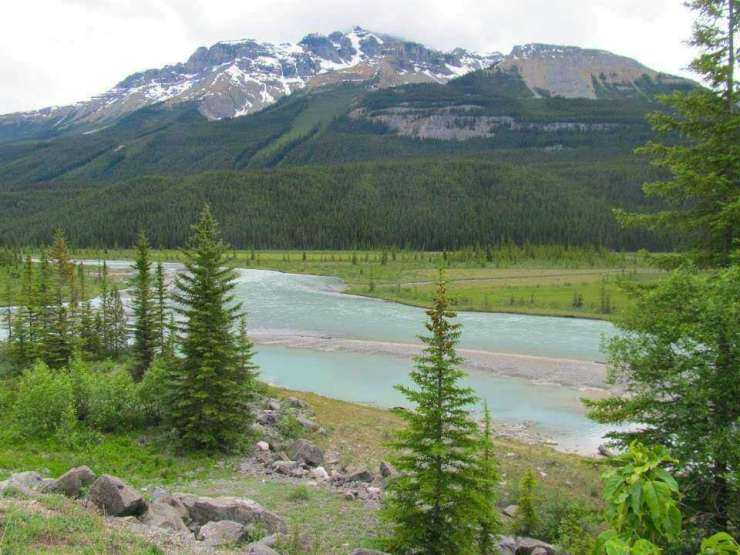 Family Friendly Things to Do in Jasper Alberta River Valley Icefields Parkway-Kids Are A Trip